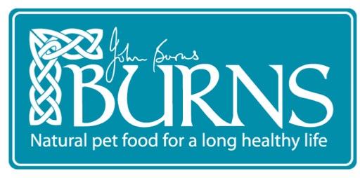 Burns Logo