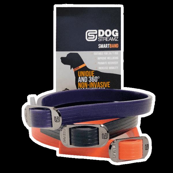 DogStreamz Collars