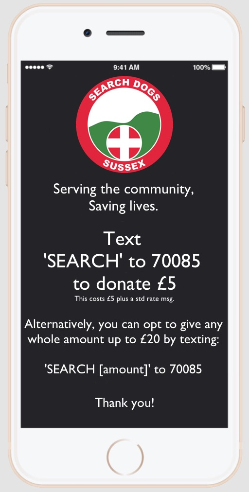 text-to-donate