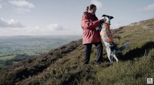 Saving Lives with the National Search and Rescue Dog Association (NSARDA)